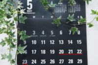 記事タイトル「日整会に向けて」のサムネイル画像